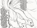 Weasel Coloring Pages Weasel Coloring Pages Elegant Weasel 16 Coloring Page