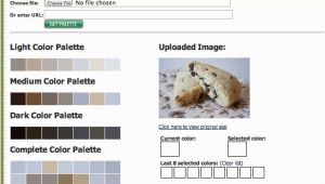 Web Page Color Palette How to Find Color Palette Inspiration Color Palette Generators