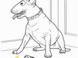 Weimaraner Coloring Pages 16 Beautiful Weimaraner Coloring Pages Pixabay