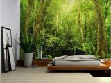 Where's Waldo Wall Mural Entrance to A Dark Leafy forest Wall Mural Removable