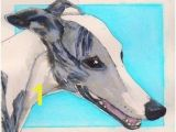 Whippet Coloring Pages 123 Best Whippet Art Images On Pinterest