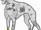 Whippet Coloring Pages 13 Best Gratis Ausmalbilder Hunde Images On Pinterest