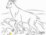 Whippet Coloring Pages Velociraptor Coloring Pages Animal Coloring Pages