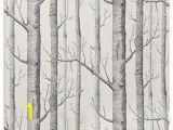 White Birch Wall Mural Haokhome Modern Birch Tree Wallpaper Non Woven forest Trunk
