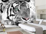 White Tiger Wall Mural Bacaz 8d Mural White Tiger Wall Art 3d Wallpaper Animal Tiger Mural 3d Wall Mural Wall Paper for Bedroom Background Home Decor Popular Wallpapers