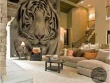 White Tiger Wall Mural Tiger Wall Mural by Pixers