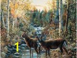 Whitetail Deer Murals 9 Best Shirley S Murals Images