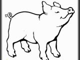 Wilbur the Pig Coloring Page 20 Wilbur the Pig Coloring Page