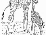 Wild Animal Coloring Pages for Kids Wild Animals Coloring Pages for Kids to Print for Free