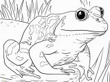 Wild Animal Coloring Pages for Kids Zoo Animals Coloring Pages Best Coloring Pages for Kids