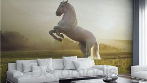 Wild Horses Wall Mural White Horse Wall Mural Wild Horse Self Adhesive Peel & Stick