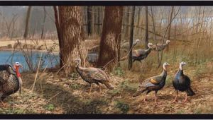 Wild Turkey Wall Murals Turkey Wallpaper Border