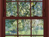 Window Illusion Murals Cherry Blossoms 1 Of 3 Faux Window Illusion