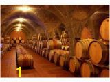 Wine Cellar Wall Mural Architectural Murals at Magicmurals