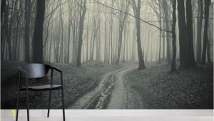 Winter forest Wall Mural Black and White forest Path Mural