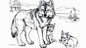 Wolf Coloring Pages to Print Out Print & Download Wolf Coloring Pages theme