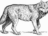 Wolf Coloring Pages to Print Out Wolves for Coloring