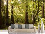 Woodland Wall Murals Wallpaper Mural 3d Wallpaper Big Tree Sunny Background Wall Customized Wallpaper for Walls