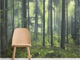 Woodland Wall Murals Wallpaper Mysterious Spring forest Square Wall Murals Home