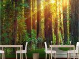 Woodland Wallpaper Murals 3d Custom Mural Wallpaper Wall Painting Sunny forest Graphy