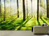 Woodland Wallpaper Murals Morning forest Fog Wall Mural Picture Wall Paper Repositionable