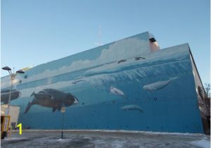 Wyland Murals Robert Wyland 54th Whaling Wall Jc Penny Bldg Anchorage Ak