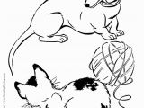 Year Of the Dog Coloring Pages Dachshund Dog Coloring Page