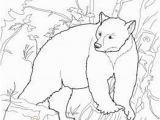Yogi Bear Coloring Pages Printable Free Coloring Pages Of All sorts