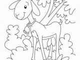 Yolk Coloring Page Amusing Barnyard Animals Coloring Pages Animal Colorings Pages