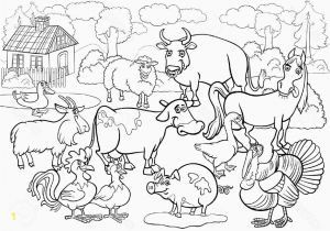 Zoo Animal Coloring Pages for Preschool Zoo Coloring Activities with Images